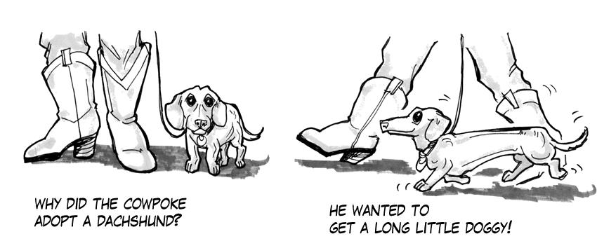 2012-01-03-dachshund