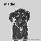 madid