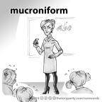 mucroniform
